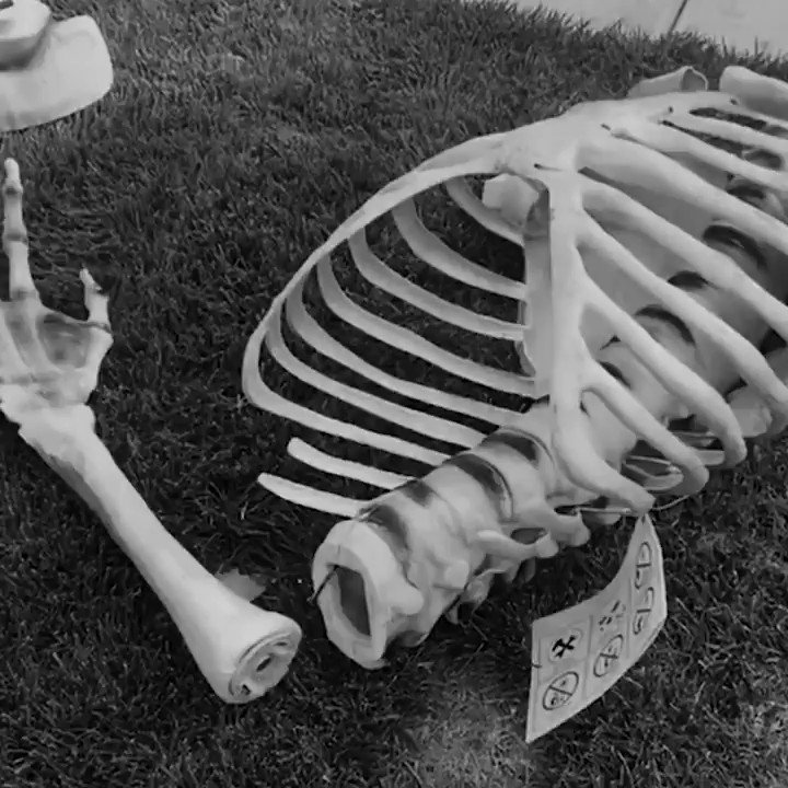 Don't look now, but there are thousands of twelve-foot skeletons rising from front lawns across the country. 👀  Keep up with their spooky and humerus adventures at the 12' Skeleton Halloween Club Facebook Group.  (Thanks to JP Houston for the killer tune.) #Halloween2020