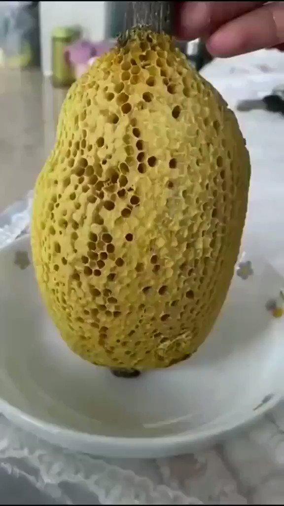 Honey is so satisfying.