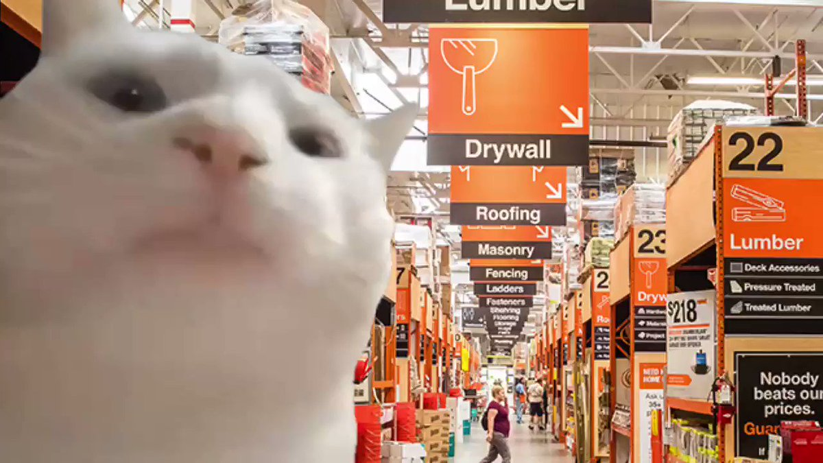 Replying to @nuffsaidny: Dads as soon as they walk in Home Depot.