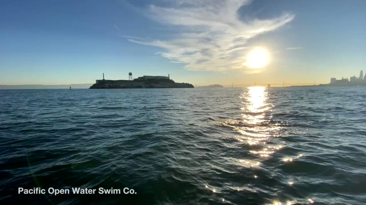 Image for the Tweet beginning: Good morning, Alcatraz!
