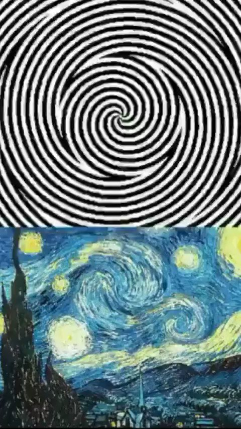 "@neiltyson So cool Neil! Try this..  Look for ten seconds at the black and white spinning circles  Now see Van Gogh's ""Starry Night"" come to life ✨"