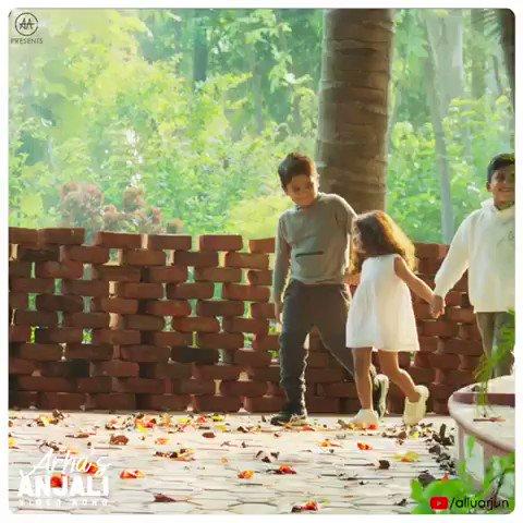 Look-out for your hearts while watching this beautiful recreation of #AnjaliAnjali song, because the cutest #AlluArha gonna steal your hearts ❤️🤩 #HBDAlluArha   ▶️    @alluarjun #GaneshSwamy @dopSURYAA #Madhu @saigopalr @adityamusic #AlluArjun