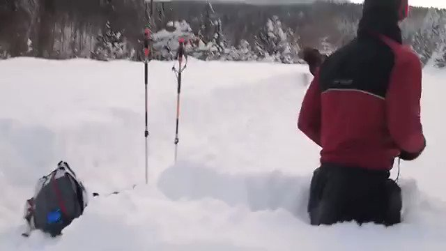 Deep snow.   Moose locomotive coming thru...