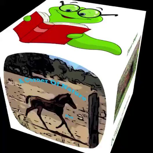 #childrensbooks #kidsbooks #books #reading #raisingreaders #booksforkids #childrensbookillustration #kidlitart #kids #kidsbook #bookworm #kidslit #instadaily #bosschick #womenwhohustle #womenpower #bosschicks #hardworker #creativeminds #acornerofnature