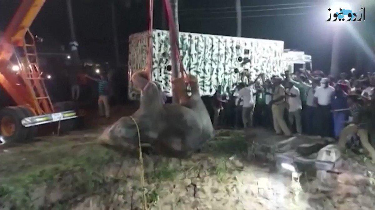 انڈیا کی ریاست تمل ناڈو میں ہاتھی کو 70 فٹ گہرے کنویں سے کیسے نکالا گیا؟ دیکھیے اس ڈیجیٹل رپورٹ میں
