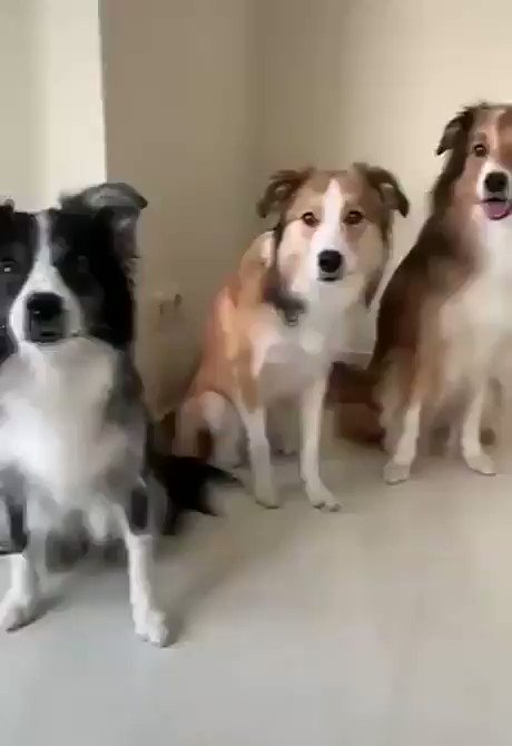 We all have this friend when it's time for a group photo.. 😅