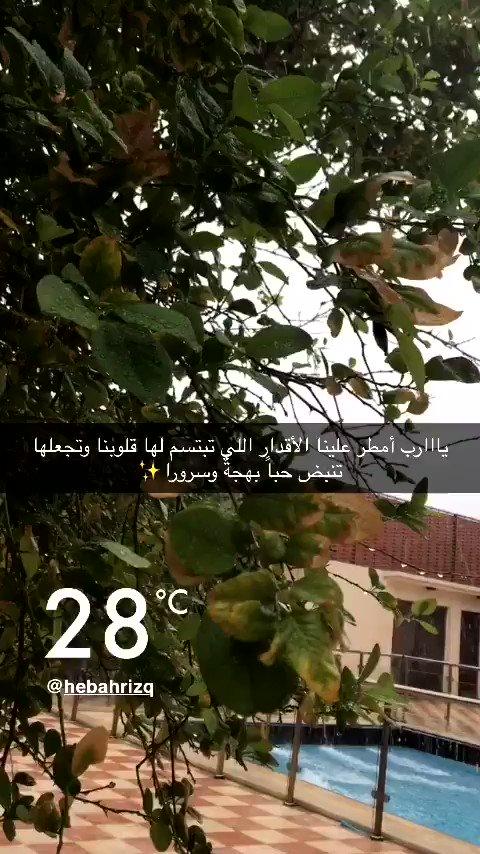يااارب أمطر علينا الأقدار اللي تبتسم لها قلوبنا وتجعلها تنبض حباً بهجةً وسرورا😍  #جدة_الآن #مطر_جدة #الاجواء_الحلوة #الخميس_الونيس #بجدة   #صوت_المطر #جمال #تناغم #لحظات #يارب