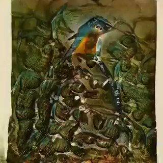 I trained my first #MachineLearning model to generate birds, based on my #VR and #AR artworks  #ML #AI #ArtificialIntelligence #aiart #SundayThoughts @HaroldSinnott @salahkhawaja @kuriharan @globaliqx @ingliguori @HarbRimah