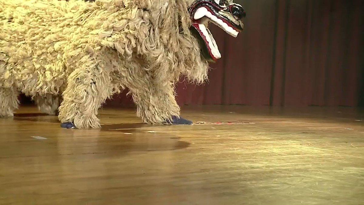 結婚式でプロに沖縄式の獅子舞をやってもらったんですが、マジで怪獣が現れたのかと思った。