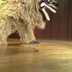 プロの獅子舞はやっぱりすごかった!大迫力の演舞!