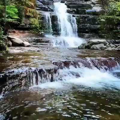 Liffey Falls - breathtaking footage from one of Tasmania's prettiest waterfalls 💦 Located south-east of Deloraine this stunning sandstone tiered waterfalls finds its home nestled within a cool temperate rainforest of myrtle, sassafrass, leatherwood and eucalypt 🌿 📽 Leah Denmen
