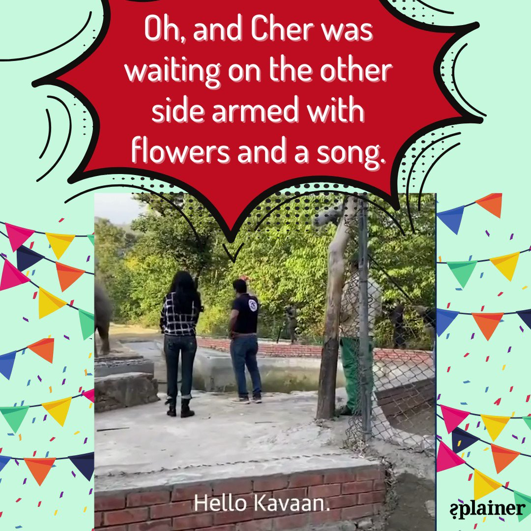 Read today's splainer to know more.     Video: @guardiannews   #splainer #subscribe #kaavan #cher #pakistan #elephant #rescued #HaathiMereSaathi