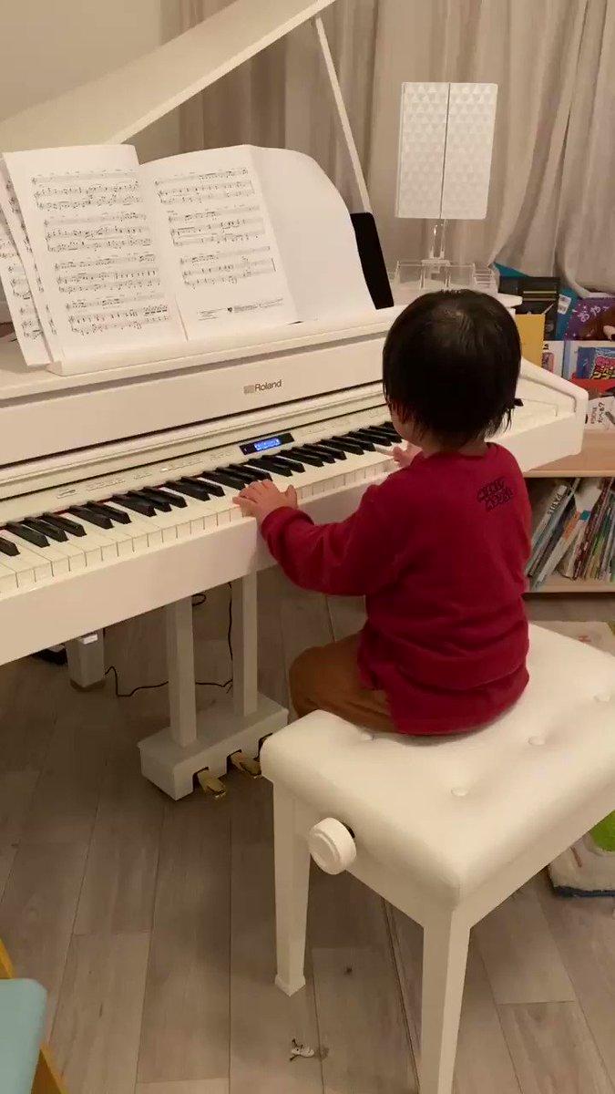 一昨日くらいからポンスがピアノに興味を持ち始めてリズムに合わせて弾くんだよ〜と教えたらちゃんと音見つけて弾けててちょっと感動した🤭でもチョイスした曲がBTSのdynamite(笑)最近こればっかり歌ってるこの人。