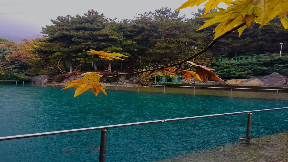 These #photos were taken in Jamshidiyeh #Park in #Tehran, on #December 4, 2020.  --- #Iran #nature #autumn #photography #holiday #raining #weather #colorful #calmness #peaceful #must_see