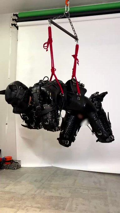 flying puppy wants to run! run puppy, run! 人犬くん空中散歩🐕☁️ https://t.co/qb7qm8iFrY