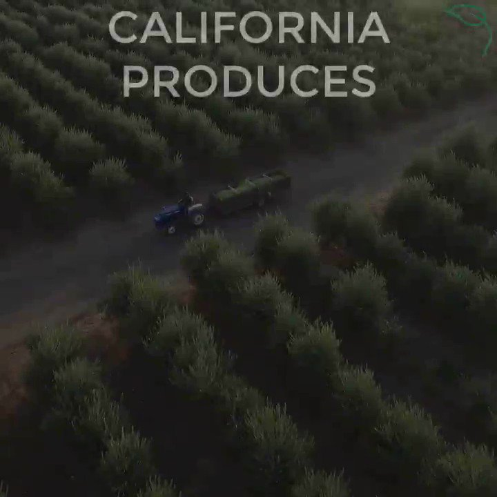 #CA produces 60% of the fresh produce grown in the United States. Support your local CA family farmers. #CAag
