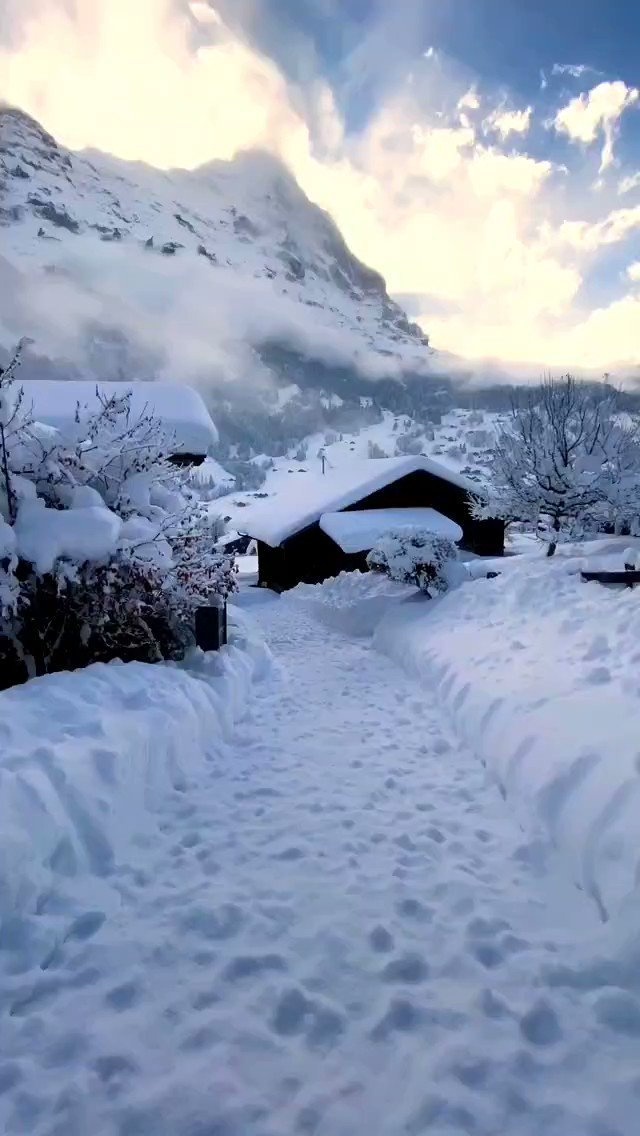 Walking into the new week like…what are you planning to do? #IneedSwitzerland  📍Grindelwald, @JungfrauRegion  🎥: