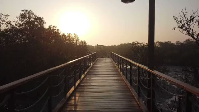 Imagine long walks & a feeling of oneness with nature?The place to experience this is at the #JubailMangrovePark #InAbuDhabi. The park features a stunning boardwalk taking visitors through stunning landscapes of mangroves  #StaySafe  📸 3noda__/Instagram 🎵mussical/Instagram https://t.co/6p3PReezov