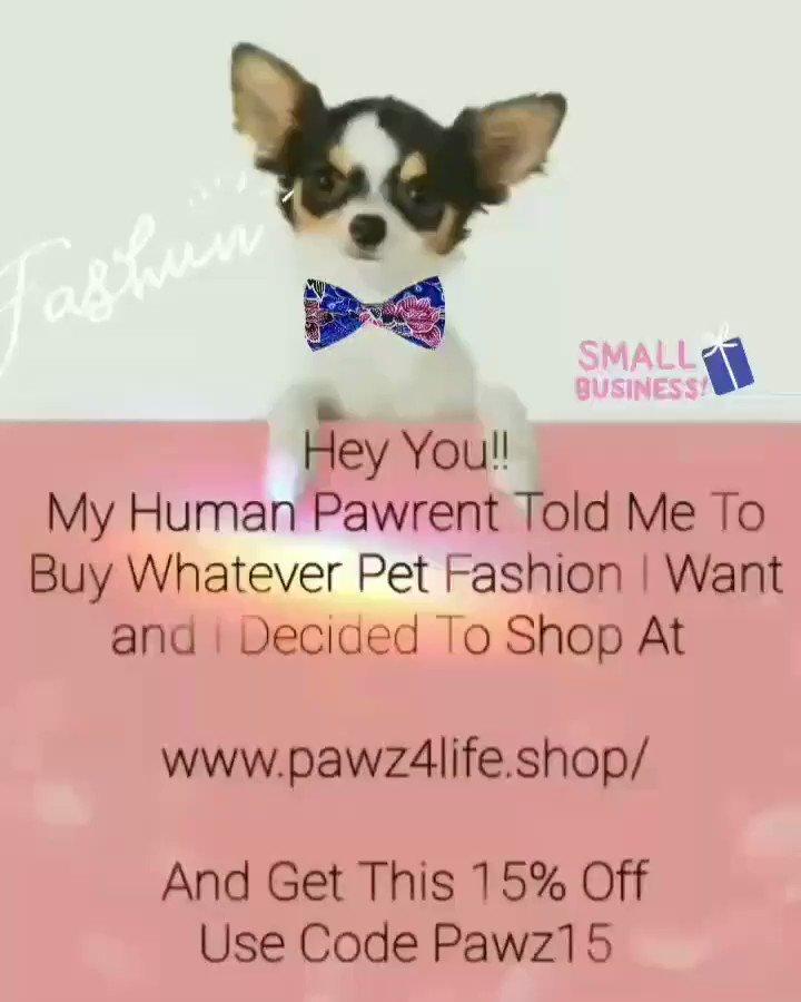 15% off order Code Pawz15     #fashun #fashunable #petfashion #petboutique #pawz4lifeshop #pawz4life #smalllocalshop #SupportSmallBusiness #dogmom #doglife #petslivesmatter #chimom