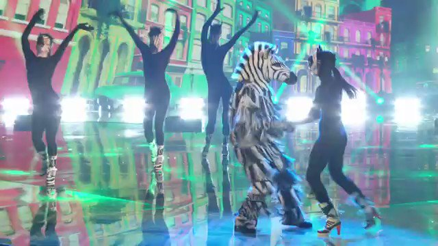 """""""The Zebra has stripes unlike any other mammal. They can also salsa like a mofo."""" - Sir David Attenborough   #TheMaskedDancer"""