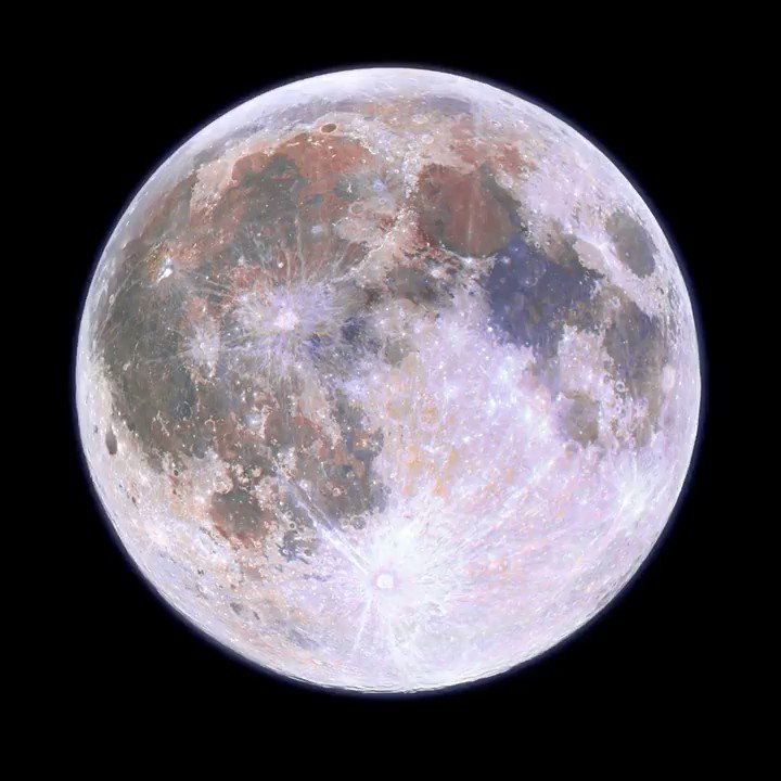 I took a picture of every full moon of the year and combined them into a half-second video. Watch the moon dance away 2020! #astrophotography #space #opteam