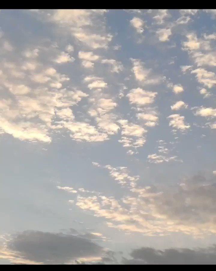 🧡🌼🌱😉☕ #nature  #sky #sun #summer #beach #beautiful #pretty #sunset #sunrise #blue #flowers #night #tree #twilight #clouds #beauty #light #photooftheday #love #green #skylovers #dusk #weather #yellow #iphonesia #mothernature
