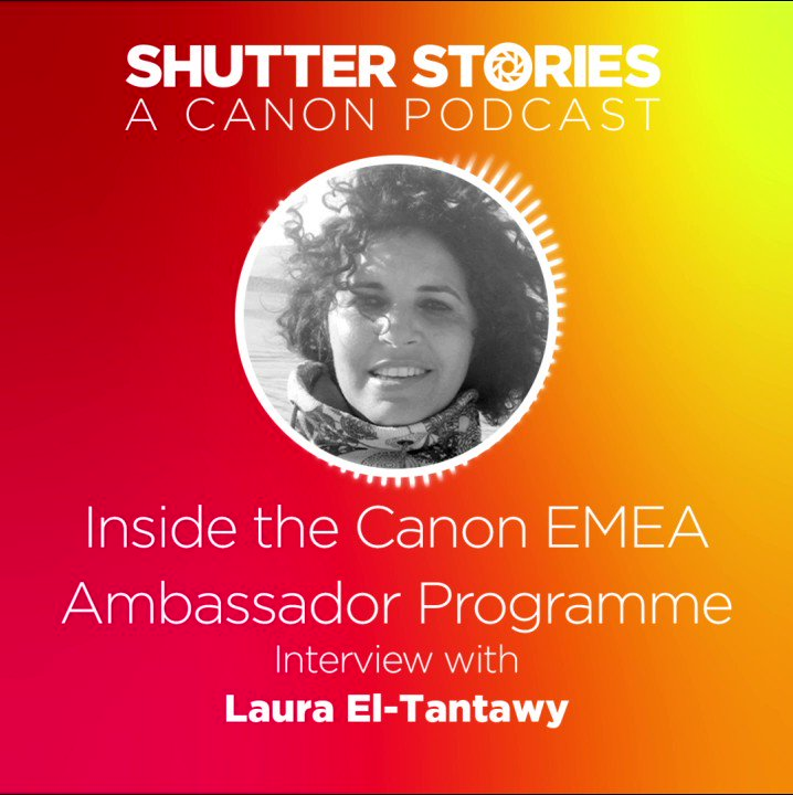 Image for the Tweet beginning: The first Shutter Stories of