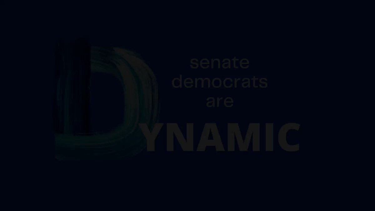 Dynamic, diverse, and determined Senate Democrats are ready to get to work in this year's General Assembly Session. Read our priorities here: