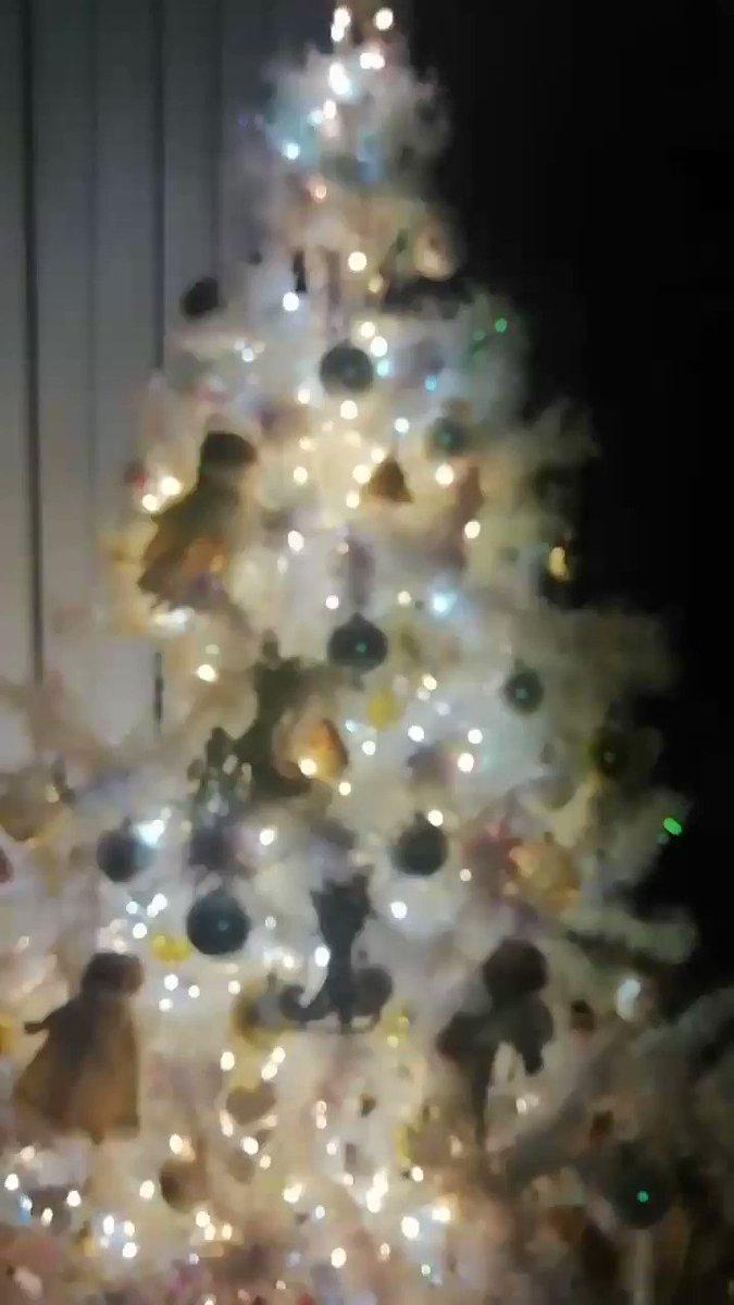 Creí que era la única que aún prende su arbolito el 14 de enero🎄😔 ¡quiero alargar la Navidad! Por mi ventana vi que hay otros 5 vecinos que buscan lo mismo. 😢#Navidad2020 nunca se olvidará.