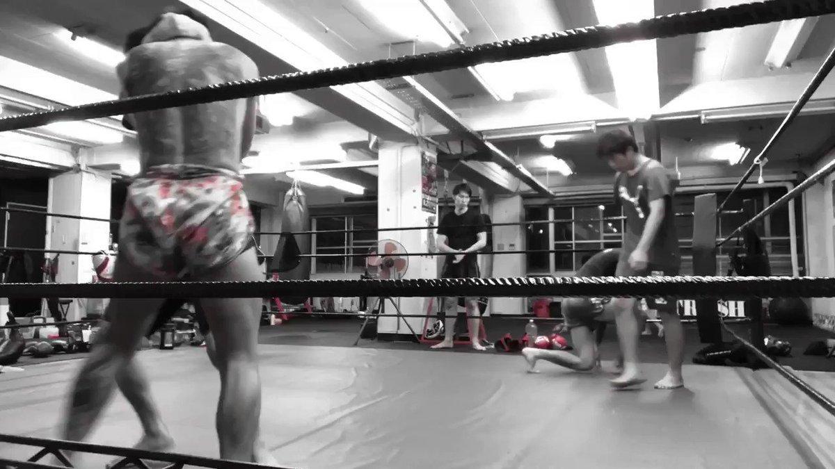 @tos  #follow #followme #フォロー #フォローミー #TRASH #キックボクシング #キックボクシングジム #広島キックボクシング #広島キックボクシングジム  #Kickboxer  #首相撲  #Clinching  #muaykhao  #ตีเข่า  #muaythai  #kickboxing #fighter #นักมวย #มวยไทย