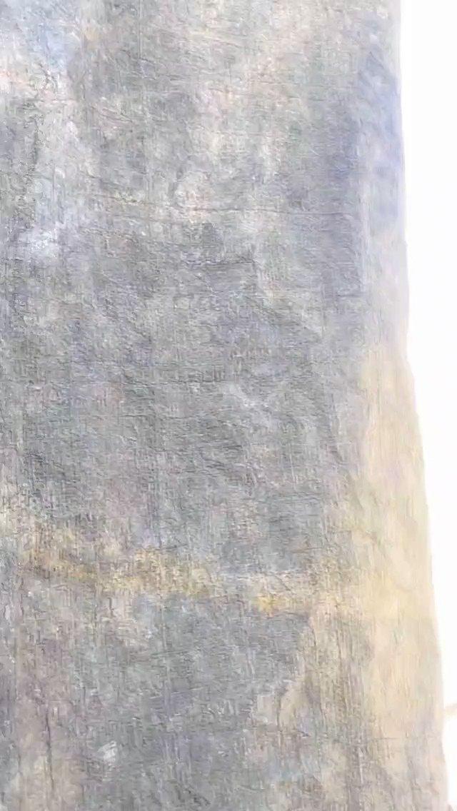 #AliReza #Sohel #Mehboob showing off their patang baazi skills & swag 🔥✨  #SohelRyan #Tollywood #TollywoodActor #BiggBossTelugu #BiggBoss