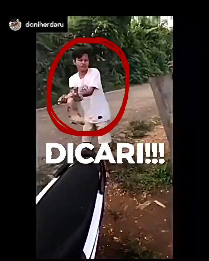 STOP BEGO!  Reposted @doniherdaru Bantu kami cari orang berkaos putih di video ini   Info awalan yang kami dapat, lokasi di Puruk Cahu, Kalimantan Tengah.   Bagi yang tahu info / identitas sampah ini, mohon kontak kami. Kami mau jumpa sampah ini.   #StopBego