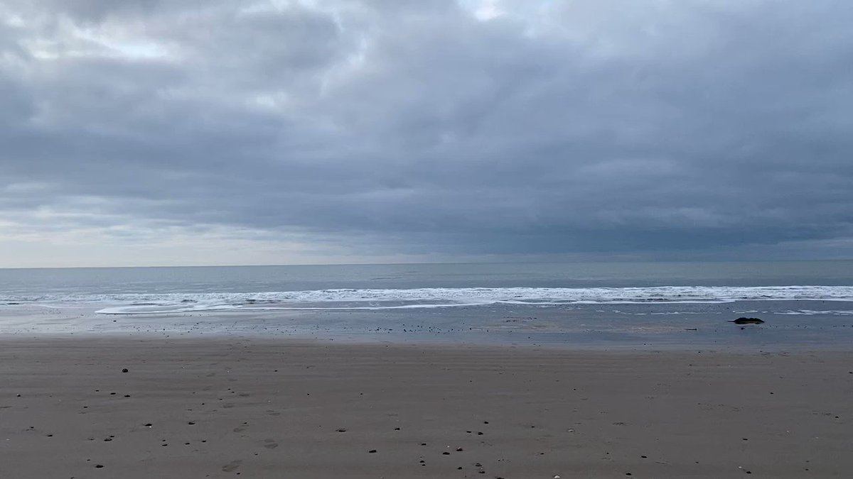 A video from today's dip in the sea. For those of you who don't know, I'm a #winterbather. Today was -2c air and 4c in the water.  Incredible!  #openwaterswimming #naturelovers #beachlife #SaturdayVibes #iceswim #lovelife #nature #wildswimming