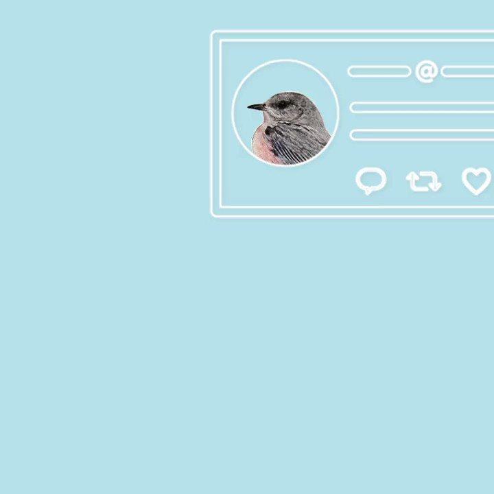¿Quieres proteger aún más tu cuenta? ⚠️Como parte de nuestra campaña #TwitterSaludable, compartimos algunos consejos aquí 🔐