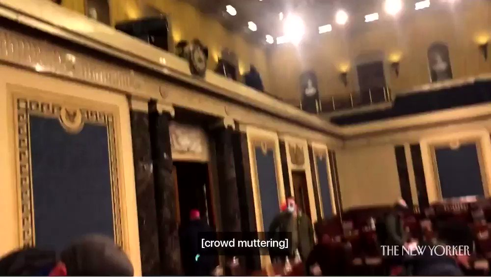 "Video of insurrectionists stealing documents on the senate floor. ""I think Cruz would want us to do this so I think we're good."" Great work, @tedcruz (Full video and article at @NewYorker )"