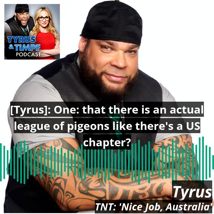 A NEW #TyrusNTimpf #podcast is out now. This week, @PlanetTyrus gives his thoughts on a Pigeon found in Australia with fake identification ... Hear all the nonsense at the link below, on @ApplePodcasts, or on @Spotify!