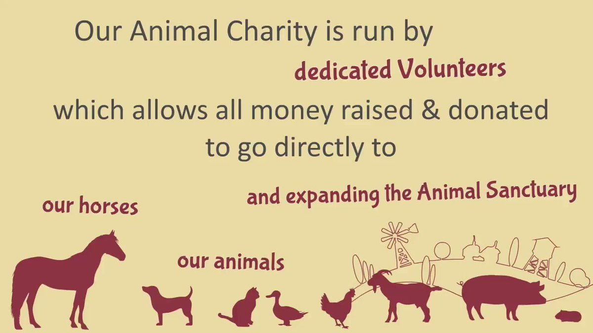 Some people asked about the ways you can help our animals! So we made this short animation explaining ways how! Thanks a lot, every little help is always useful 🤩 #ngo #animalrescue #rescatedeanimales #horserescue #help #helptheanimals #animalsanctuary #tenerife #canarias