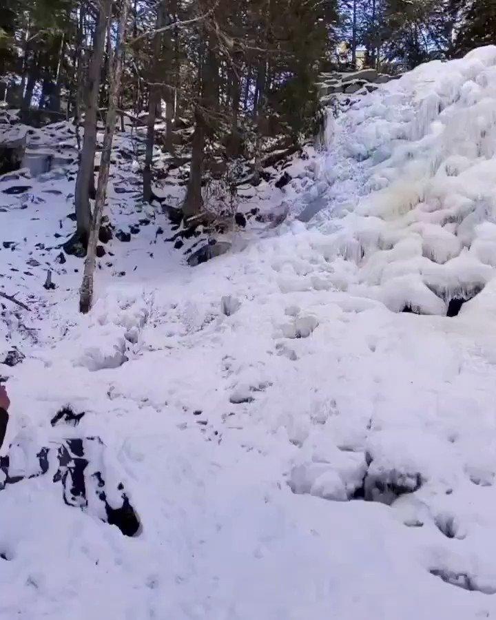 The #amazing #winter #scenery of the Hays Falls  #snow #frozen #waterfall #beautiful #peaceful #tranquility #calm #trees #travelphotography #travel #nature #photography #hikingtrail #hiking #explore #january #explorenb #destinationnb  #newbrunswick #explorecanada #canada