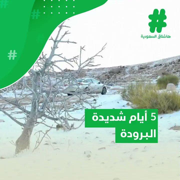 ابتداءً من يوم غدٍ وحتى السبت المقبل.. موجة شديدة البرودة تضرب معظم مناطق المملكة.  #قصة_هاشتاق