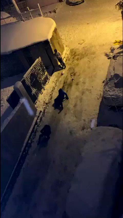 İstanbula kar yağdı böyle oldu. Gece yarısı gençler karda katmanın keyifini yaşıyor. Çok özlemişler. 🇹🇷 #Türkiye #İstanbul #üsküdar #turkey #europe #karyağıyor #kargeldi #snowing #snow #Schnee #Neige #Nieve