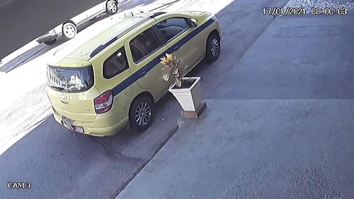 Taxista é flagrado furtando planta no Rio.
