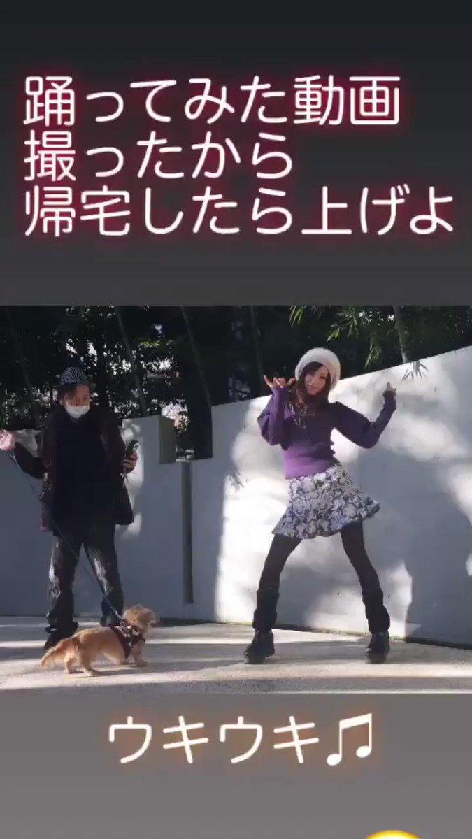 素材動画撮ってきたお!帰宅したら編集しよー! 新年から #踊ってみた