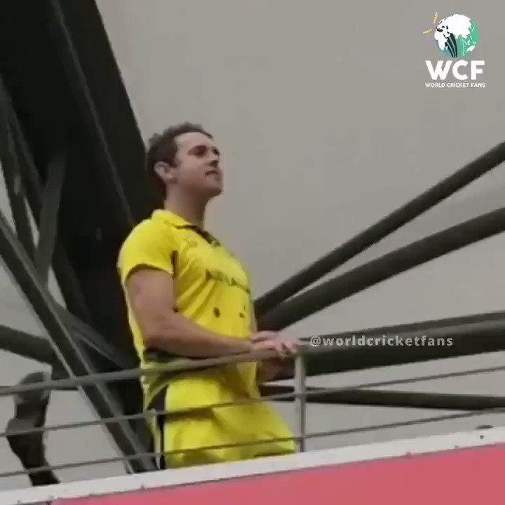 An Australian fan after India's Win!  Bharat Mata Ki Jai!!🇮🇳🇮🇳  #INDvsAUS