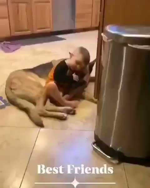 Some moments are priceless !!🐶❣️  🎥by JenHealy FB