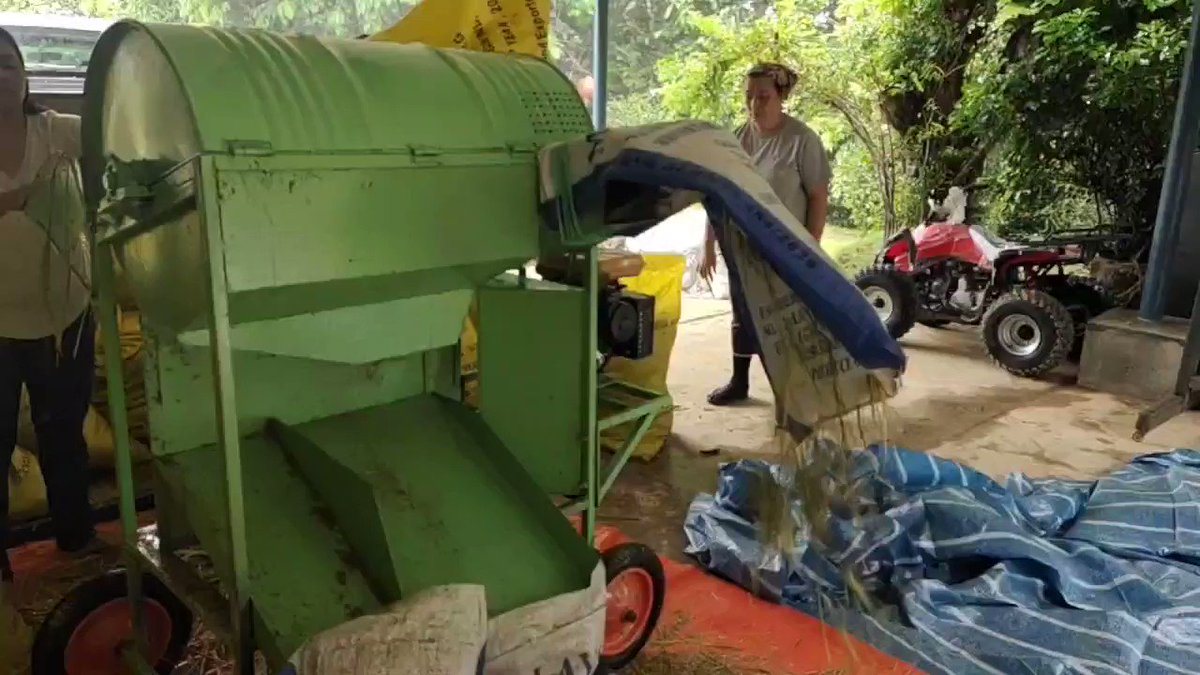 Mesin pelerai padi yang saya bikin di workshop sedang berkasi julung kalinya.. Mesin ini dibuat khas untuk kelompok petani di sebuah kampubg di Tenghilan yang jalankan penanaman padi teknik SRI.. YB Jannie @tuo777 Juga turun bersama ubati rindu menuai padi. #TerusBerkhidmat
