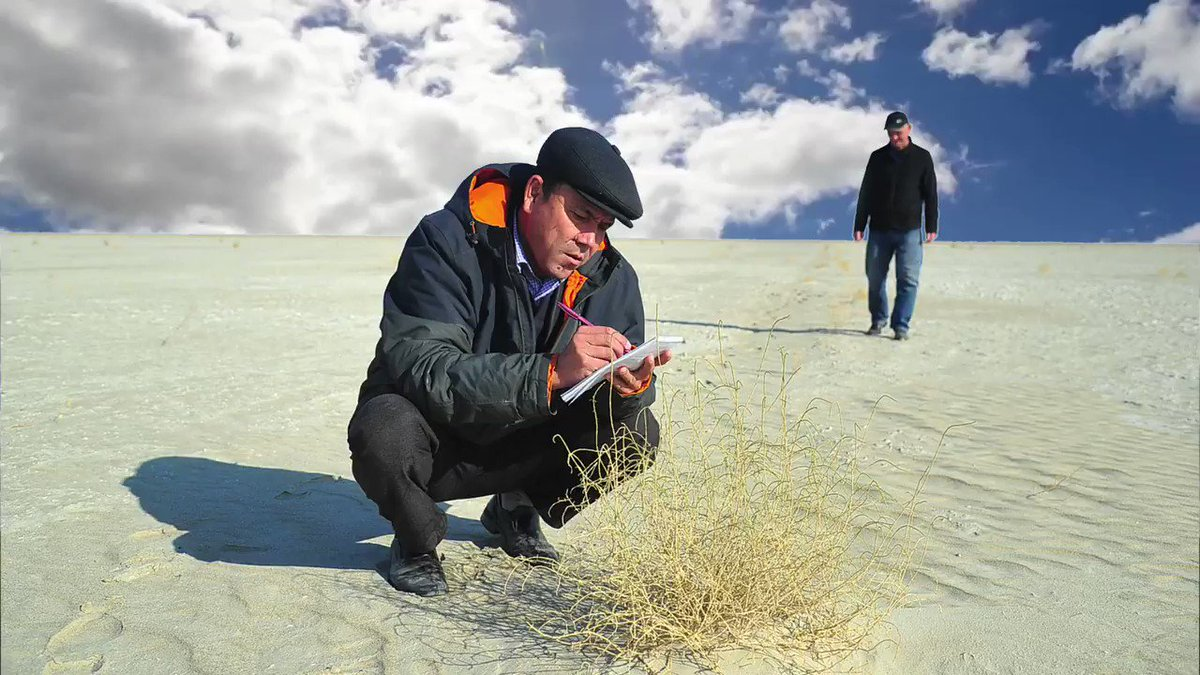 From the sea🌊to the desert🏜-it's the #AralSea that pushes us to take #ClimateAction. Otherwise, we'll watch how humans can destroy the🌍.  Read our #AccLab's blog on the #GreenAralSea initiative, which taught us balancing the needs of🧑‍🤝‍🧑& the environment: