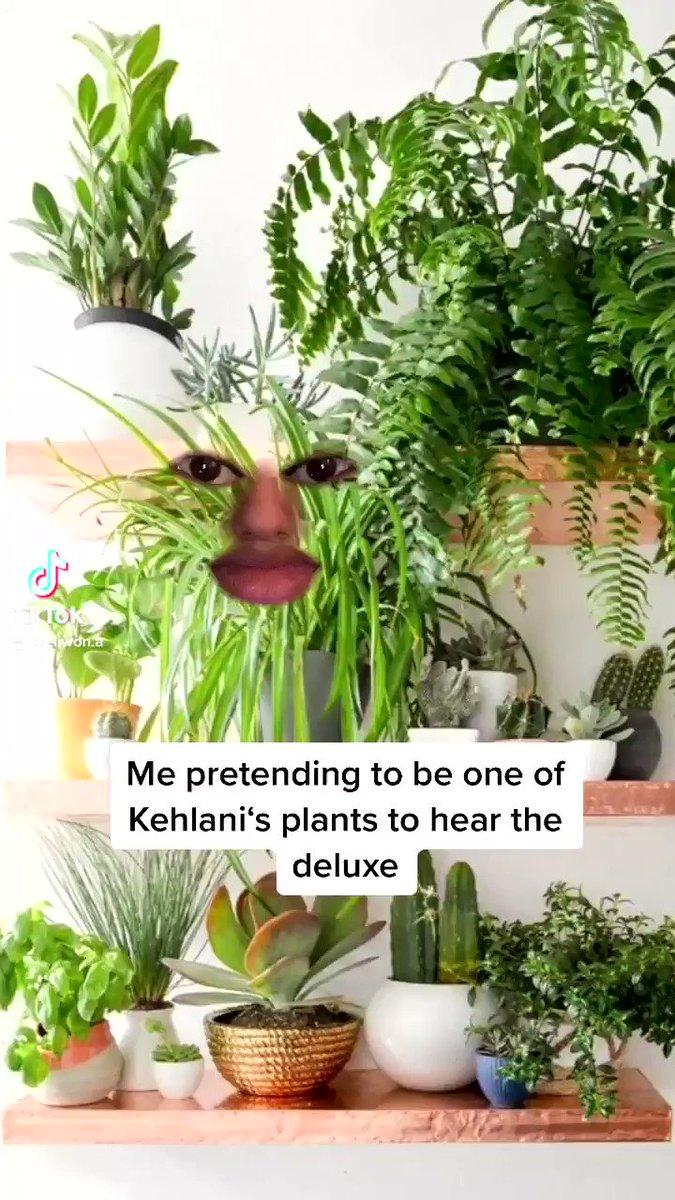 @Kehlani