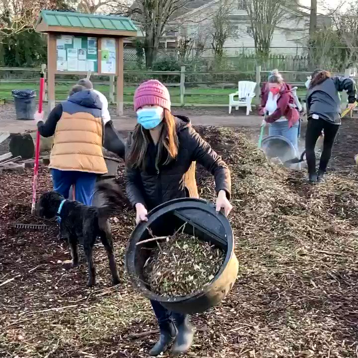 Impromptu #volunteer work party at the dog park when the city got us the filler we asked for but dumped it in the wrong place....