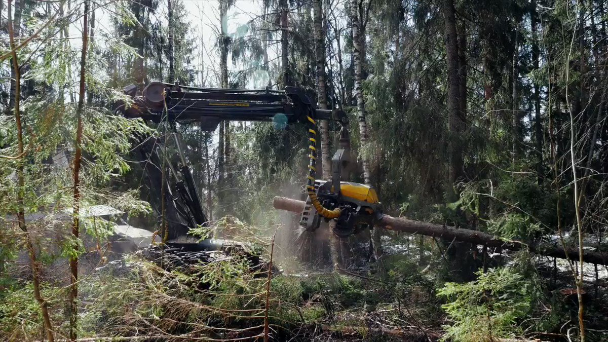 """The Swedish forest industry is unsustainable. It is exploiting indigenous land and disrespecting their rights. The bitter truth about the so-called """"green"""" forestry in Sweden is explained in this new documentary, watch it! 🌍👀  #StandWithSápmi  https://t.co/Lc4dddxpbG https://t.co/xFlVH1vgCC"""