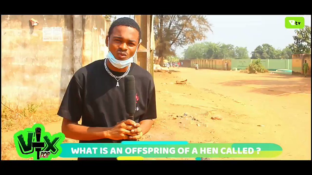 "Vox pop: What is an offspring of a ""HEN"" called?  Click on the link below for full video    #LINK #COVID19 #LayconOnJimmyJumpOff @officialRemoTV #Trump #HappyBdayPEE #hispanicmcyttwtselfieday #Burn_It"